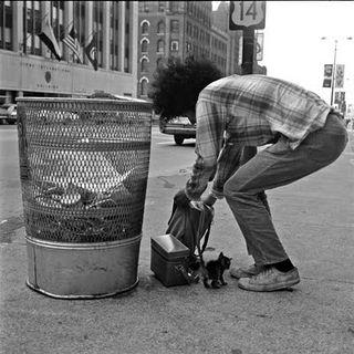 VMaier trash can, kitten