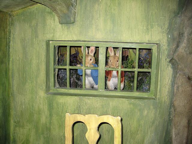 Peter Rabbit and B Bunny