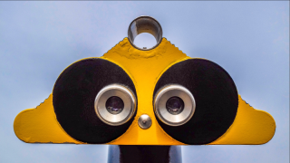 Wing-looking-telescope-beak-yellow-binocular-1376403-pxhere.com